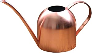 Fasmov 17 oz Stainless Steel Water Can Watering Can for Outdoor Indoor Plants, Copper