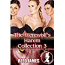 The Werewolf's Harem Collection 3: (A Harem, Succubus, Witch, Supernatural, First Time Erotica)