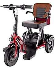 3 Wheel Electric Mobility Scooters for Elderly, Foldable 3 Wheel Electric Scooters for Disabled Adults, with 300W Motor Up to 20 Km/H 3 Speed Adjustment Rear Dual Drive