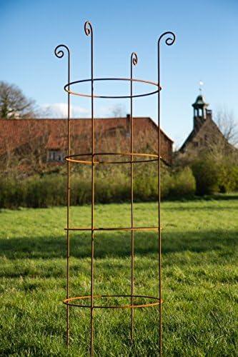 Estable pérgola metal H: 180 cm diámetro: 49 cm celosía Obelisco Hierro oxidado. Rank Torre: Amazon.es: Jardín