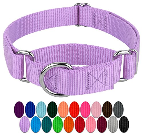 Country Brook Design - Martingale Heavyduty Nylon Dog Collar (Small, 3/4 Inch Wide, Lavender)
