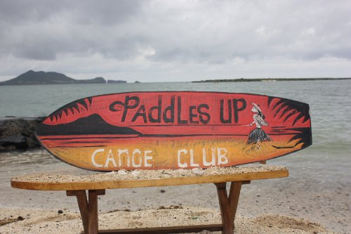 """""""PADDLES UP, CANOE CLUB"""" SURF SIGN 40"""" - OUTRIGGER SIGNS"""
