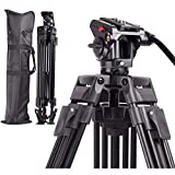 Regetek Professional Video Camera Tripod System Heavy Duty Aluminum Adjustable 65'' Tripod Stand with Fluid Pan Head and Carry Bag for for Canon Nikon DV Camcorder DSLR Photo Studio