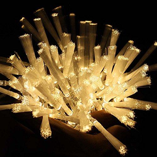 Fiber Optic Christmas Lighting Outdoor