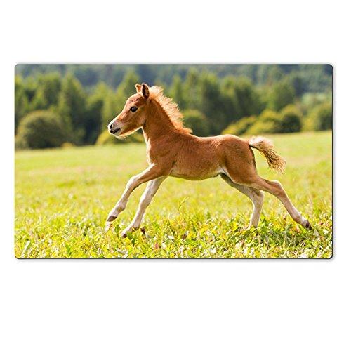 liili-large-table-mat-284-x-177-x-02-inches-foal-mini-horse-falabella-image-id-15217589