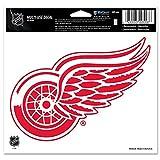 NHL Detroit Red Wings Multi-Us