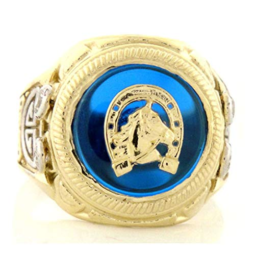 Sapphire Two 14k Tone Gold (14k Gold Two-Tone Sapphire Blue Horseshoe CZ Mens Ring (Style# 1915) - Size 9)