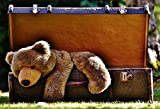 AOFOTO 5x3ft Old Suitcase Backdrop Toy Bear Photography Background Sweet Spring Meadow Outdoor Summer Retro Photo Studio Props Vinyl Wallpaper Kid Boy Baby Girl Infant Newborn Artistic Portrait