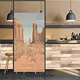 3D Decorative Privacy Window Films,Sunny Hot Day Monument Valley Arid Country Primitive Nation Arizona USA,No-Glue Self Static Cling Glass Film for Home Bedroom Bathroom Kitchen Office 24x48 Inch