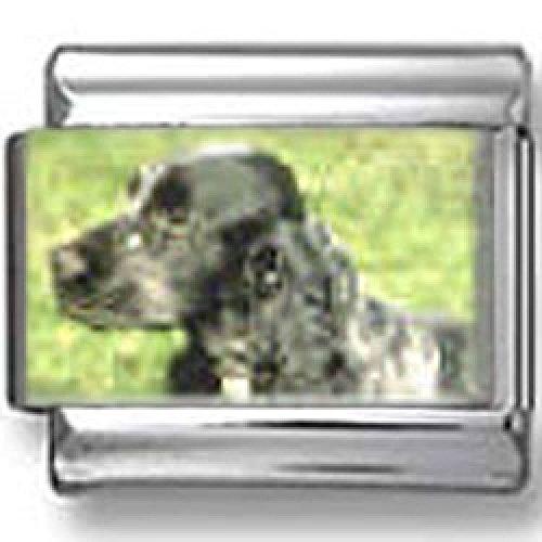 Spaniel Dog Photo Charm (Cocker Spaniel Dog Photo Italian)
