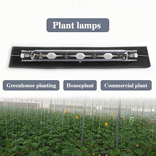 1PCS 945W 3000K HID Grow Light Bulb CMH Lamp Hydroponics Grow Light Bulb by Vietly (Image #6)