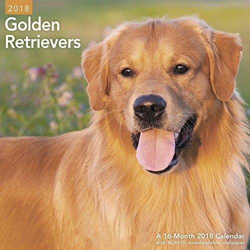 2018 Golden Retrievers Wall Calendar (Mead) (Wall Retriever)