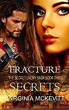 Fracture The Secret Enemy Saga book three Secrets