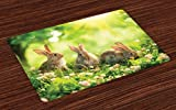 Lunarable Animal Place Mats Set of 4, Funny Fluffy Rabbits Bunny Family on Daisies Grass Easter Meadow Fresh Image, Washable Fabric Placemats for Dining Room Kitchen Table Decoration, Green and Tan