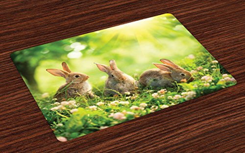 Lunarable Animal Place Mats Set of 4, Funny Fluffy Rabbits Bunny Family on Daisies Grass Easter Meadow Fresh Image, Washable Fabric Placemats for Dining Table, Standard Size, Green Tan