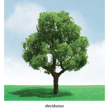 Pack 2 deciduous trees. Imitation Miniature Diorama. CHA6092301