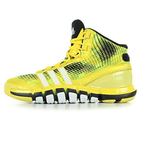 Adidas Adipure Crazyquick Q33299, Basketball Homme