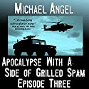 Apocalypse with a Side of Grilled Spam: Episode Three (The Strangelets Series) Audiobook by Michael Angel Narrated by Jon Goffena