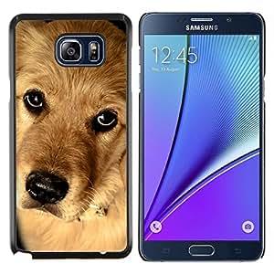LECELL--Funda protectora / Cubierta / Piel For Samsung Galaxy Note 5 5th N9200 -- Golden Retriever Canadiense Perro Mestizo --