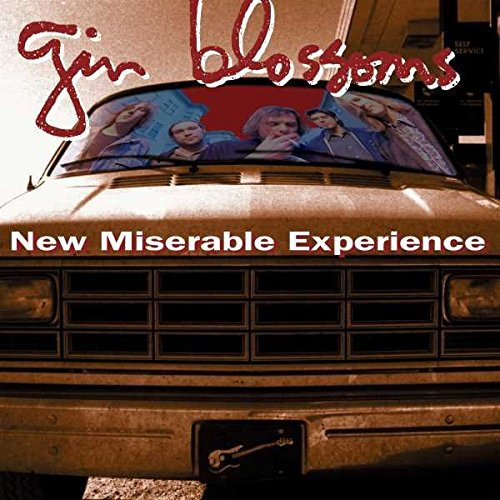 Price comparison product image New Miserable Experience [LP]