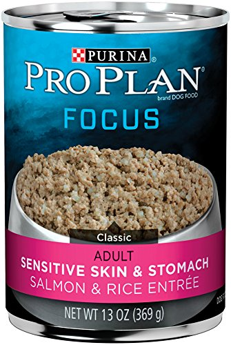 Dog Canned Formula - Purina Pro Plan 3810002766 Focus Sensitive Skin & Stomach Salmon & Rice Entre Classic Wet Dog Food - 12-13 oz. Cans