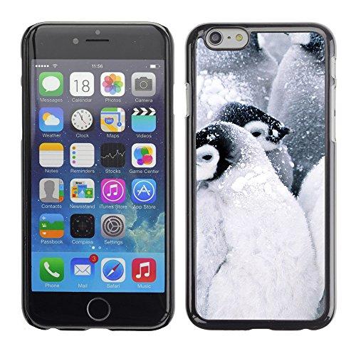 """Premio Sottile Slim Cassa Custodia Case Cover Shell // V00002890 bébés pingouins // Apple iPhone 6 6S 6G PLUS 5.5"""""""