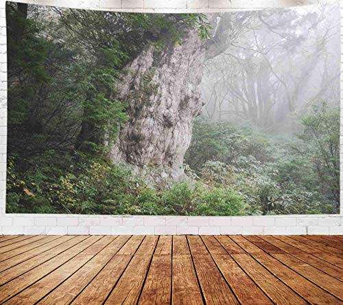 Fullentiart Wall Tapestry, Map Large Tapestry Wall Hanging 80x60inch The Biggest in World Heritage site sugi Jyoumonsugi is Yaku Cedar Yakushima Kagoshima Decoration Room Holiday Décor Tapestries