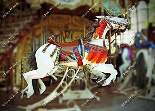 Choose Style! Carousel Horses With Feathers Paris France Europe Montmartre Sacre Coeur Streets of Paris Original Fine Art Photography Wall Art Photo Print