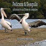 Pelicans and Seagulls, Graeme Mackay, 1922120324