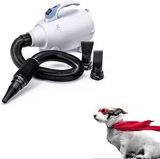 QZH Secador de Pelo de Velocidad Variable para la preparación de Mascotas, Gato de Perro de Velocidad Continua Gato de peluquería y secador de Pelo para Perros Grandes Que se bañan,White: Amazon.es: