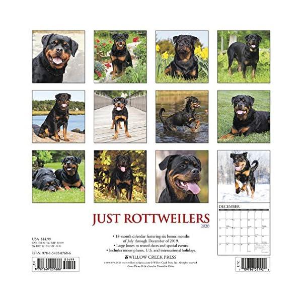 Just Rottweilers 2020 Wall Calendar (Dog Breed Calendar) 1