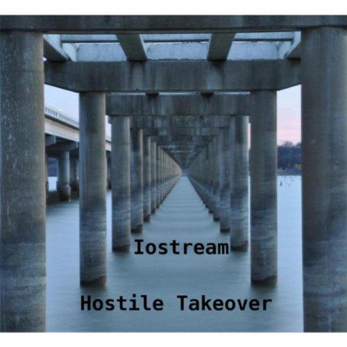 Hostile Takeovers Essay
