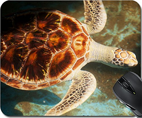MSD Natural Rubber Mousepad Mouse Pads/Mat design: 13530272 turtle - Sri Lanka Coral