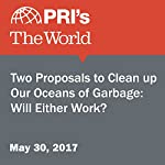 Two Proposals to Clean Up Our Oceans of Garbage: Will Either Work? | David Leveille