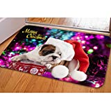 HUGS IDEA Cute French Bulldog Soft Flannel Indoor Welcome Doormat Floor Mat Rug Home Decor