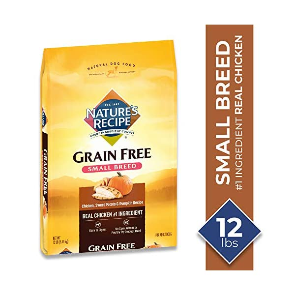 Nature's Recipe Grain Free Chicken, Sweet Potato & Pumpkin Recipe Dry Dog Food for Small Breeds, 12 Pounds, Easy to Digest