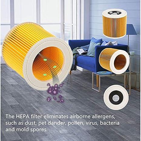 EmNarsissus En Caja para el Elemento de Filtro de aspiradora Karcher A2004 A2054 Wd2000 Filtro de Cartucho