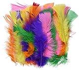 Playbox Big Turkey Feathers (60-Piece)