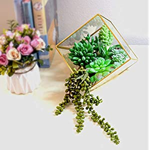 Dandevo 8 Pcs Unpotted Fake Succulent Plants Assorted Realistic Artificial Faux Plastic Silk Greenery Stems in Bulk String of Pearls Hanging Plant for Terrarium Home Wall Decor Large and Small 3