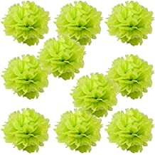"""WYZworks Set of 10 - LIME GREEN 14"""" - (10 Pack) Tissue Pom Poms Flower Party Decorations for Weddings, Birthday, Bridal, Baby Showers, Nursery, Décor"""