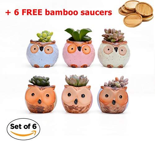 (Ceramic Owl Succulent Planter | 2.3 Inch Mini Size Set of 6 | with Bamboo Saucer | Cute Bonsai Glaze Pots | Home Office Desktop Indoor Decoration | Perfect Birthday Wedding Holidays Kid Gardener Gift)