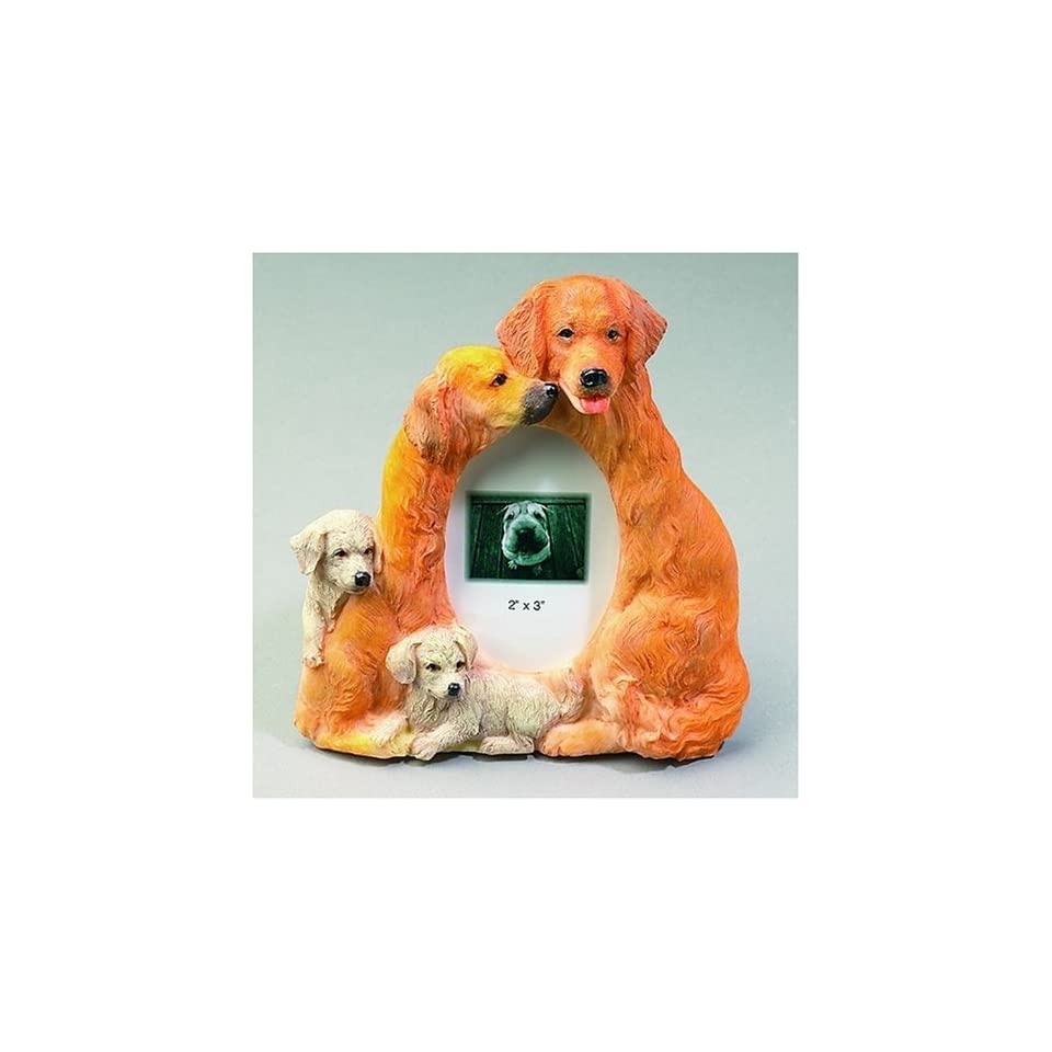 Golden Retriever DOG Photo Frame (2x3)