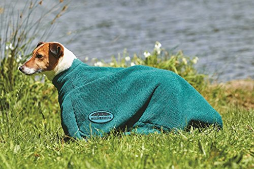 Weatherbeeta Dry-Dog Bag M Hunter Green
