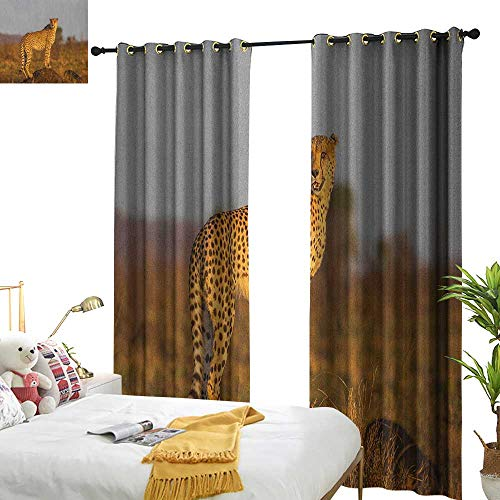 Littletonhome Insulated Sunshade Curtain Safari African Wild Animal Cheetah Standing on Termite Mound Savannah Nature View Set of Two Panels W108 x L96 Ginger Apricot Dust