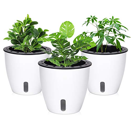 (Self Watering Planter, 3 Pcs Plastic Self Watering Flower Pots for African Violet, White Planter Pot with Cotton Rope for Indoor Plants, 6.1 Inch × 5.5 Inch)