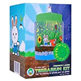 PREMIUM LARGE TERRARIUM KIT For Kids | -NEW-Remote Control MULTICOLOR LED Light-Up Lid | EXTRA Large Jar to Grow Customized Mini Garden | Excellent Science Gift For Children | Best Toys Present Age 6+