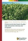 Crescimento do Capim Sudão sob diferentes lâminas de irrigação: Análise de crescimento do Capim Sudão sob diferentes lâminas de irrigação no município de Santiago - RS