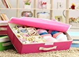 Zondam 15 Cell Dustproof Drawer Dividers Closet Organizers Sock Bra Underwear Scarf Tie Storage Box with Cover Rose red