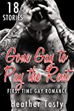 gay gone gay to pay the rent older man first time bundle bdsm mc biker mm alpha male stories book box novel collection complete series book 1