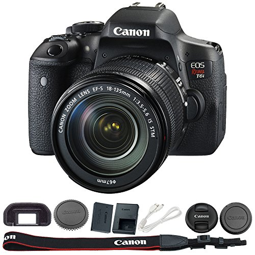 Canon EOS Rebel T6i Digital SLR with EF-S 18-135mm IS STM Le